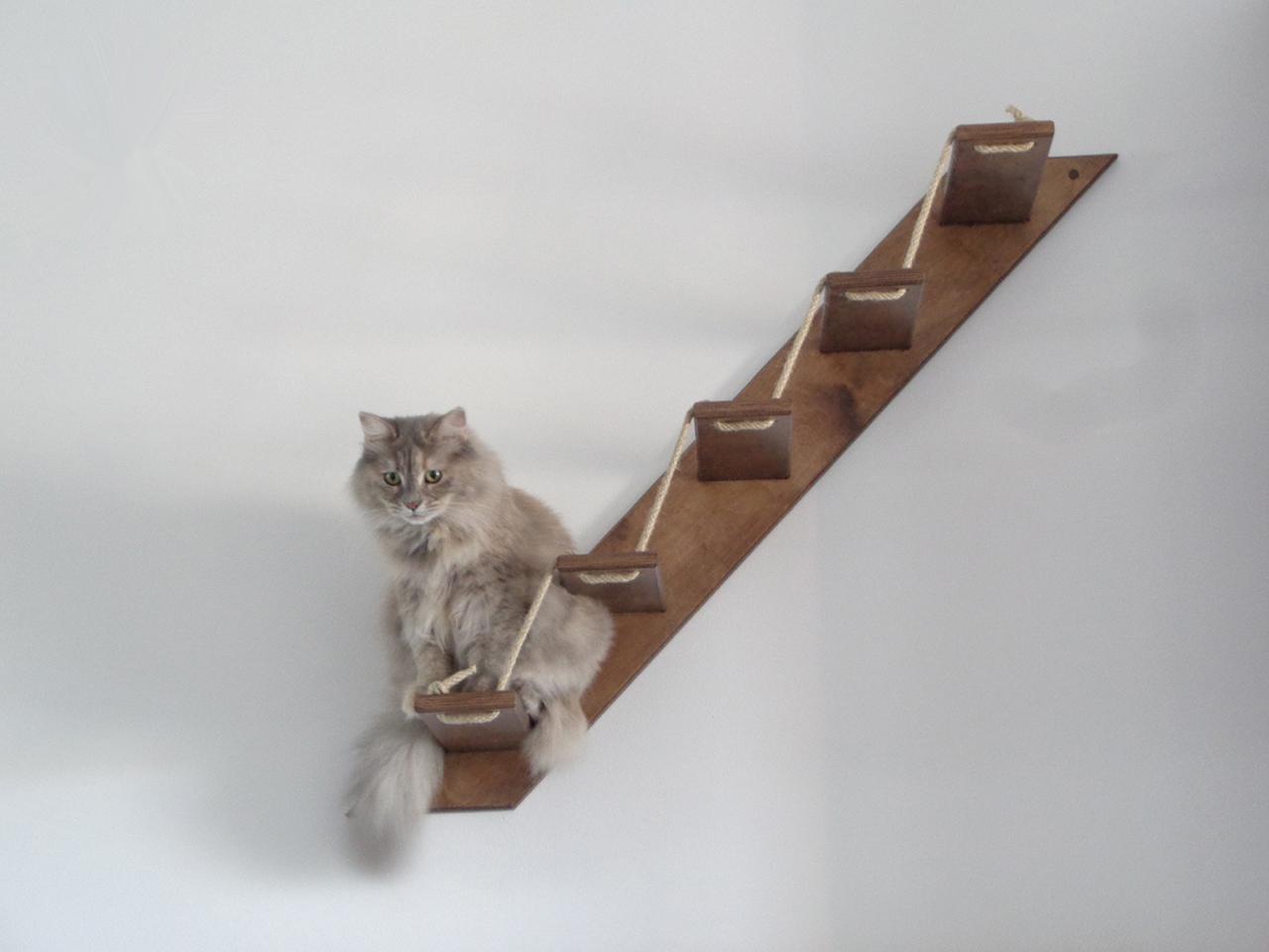 Cat Stair AthletiCat