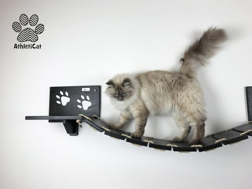 Cat bridge black