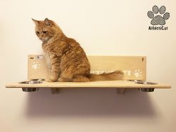 Cat-shelf-with-bowls-carved-writings-6