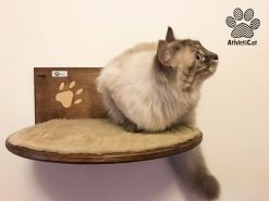 Cat shelf with carved paws and textile