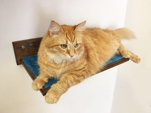 Cat shelf with peluche fabric