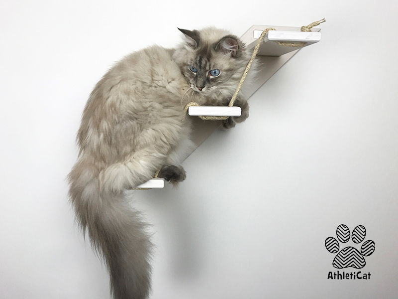 how to make cat stairs