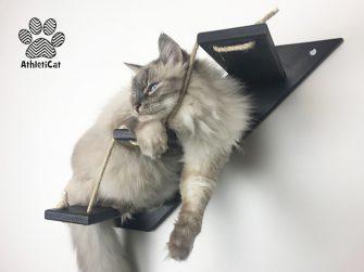 Cat stair black