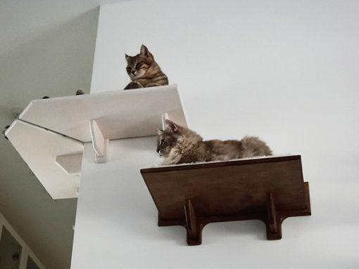 Corner cat shelf