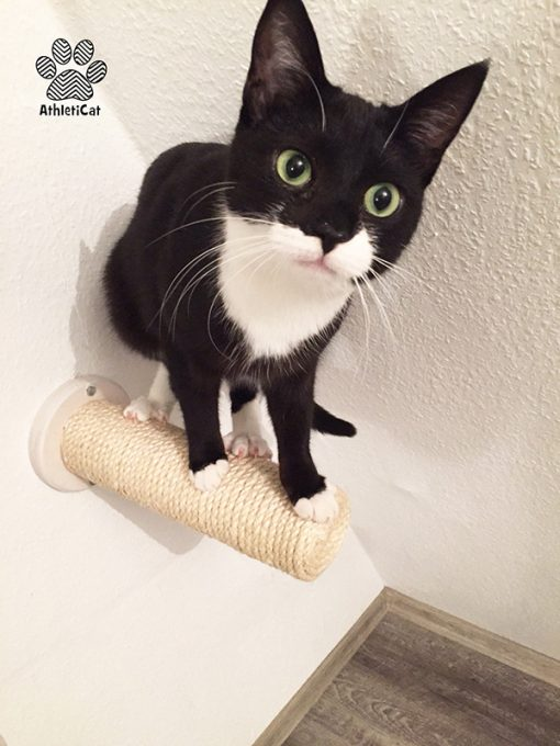 Wall mounted cat scratcher