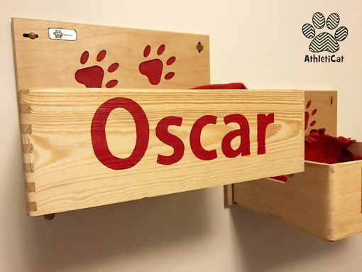 Wooden cat box athleticat