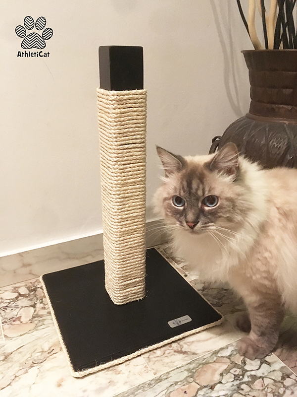 Wooden cat scratching pole