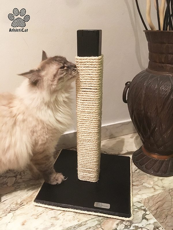 Wooden Cat Scratching Post Made In Italy Athleticat