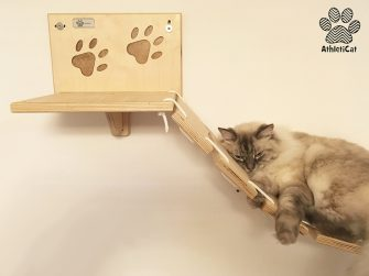 Cat bridge double version