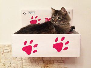 Cuccia per gatti muro