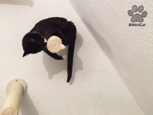 Wall scratcher for cats