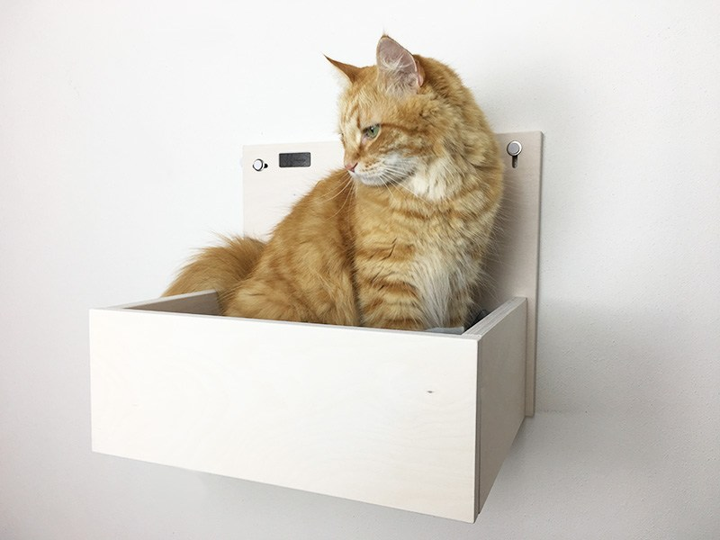 catbox with carved paws