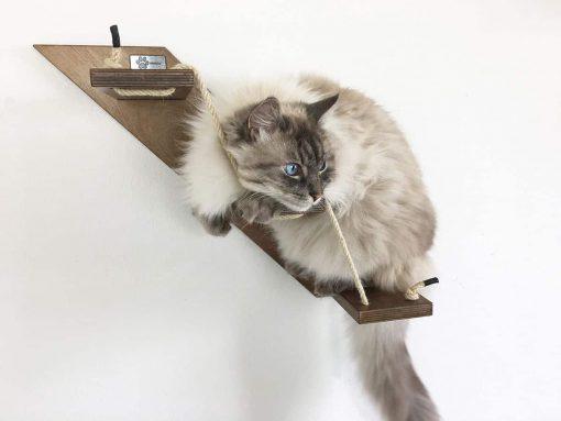 walnut cat stair