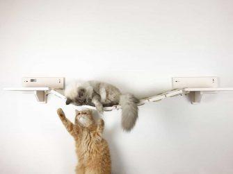 Cat bridge white